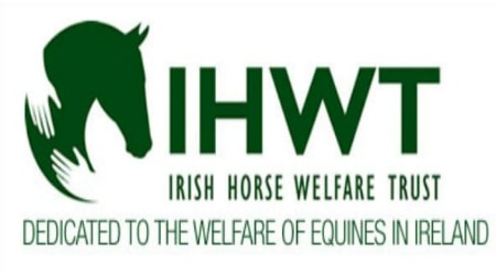 The Irish Horse Welfare Trust