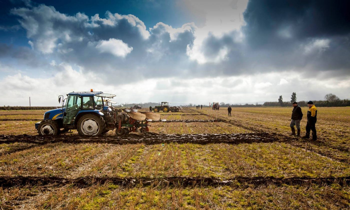 A competitor at the National Ploughing Championship here in Ireland