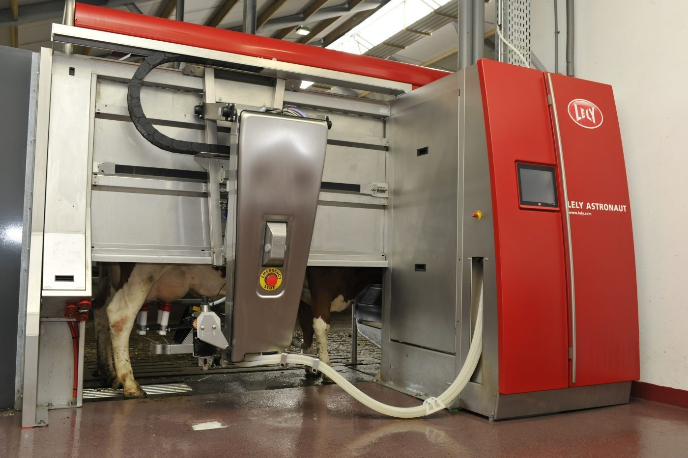 state-of-the-art automatic milking machine on an Irish dairy farm