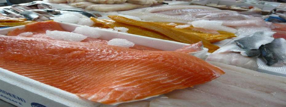 Salmon farm produce as seen on the aquaculture tours of ireland.
