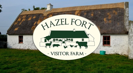 Hazelfort Farm, Co. Kerry